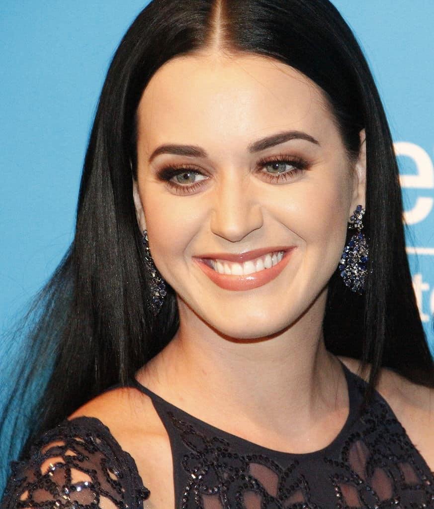 Katy Perry foi persistente em sua carreira